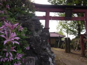 宮代町の神社巡り